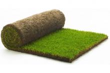 Экономный рулонный газон